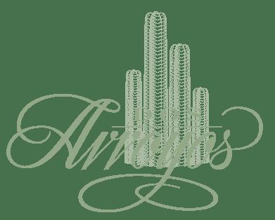 Salon De Fiestas En Queretaro Jardines Para Eventos